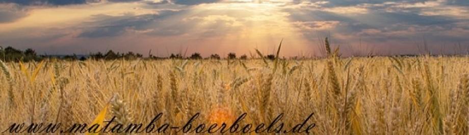 Boerboel Züchter Deutschland
